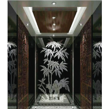 浙江吊頂不銹鋼后壁藝術玻璃鏡乘客電梯