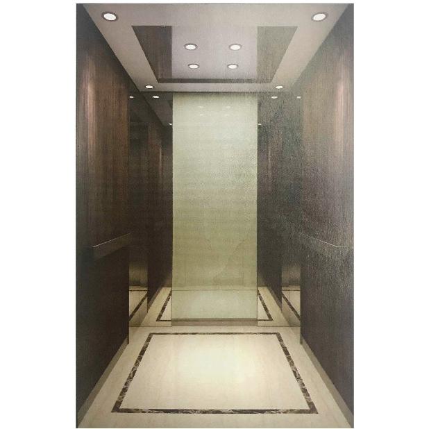 浙江吊頂不銹鋼LED燈乘客電梯