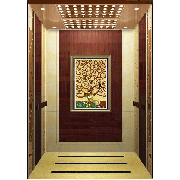 浙江吊頂玫瑰金鏡面乘客電梯