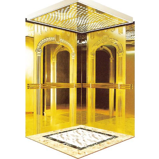 浙江吊頂不銹鋼鏡面鏤空乘客電梯